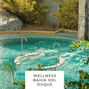 Bahía Wellness Retreat Bahía del Duque dia en pareja